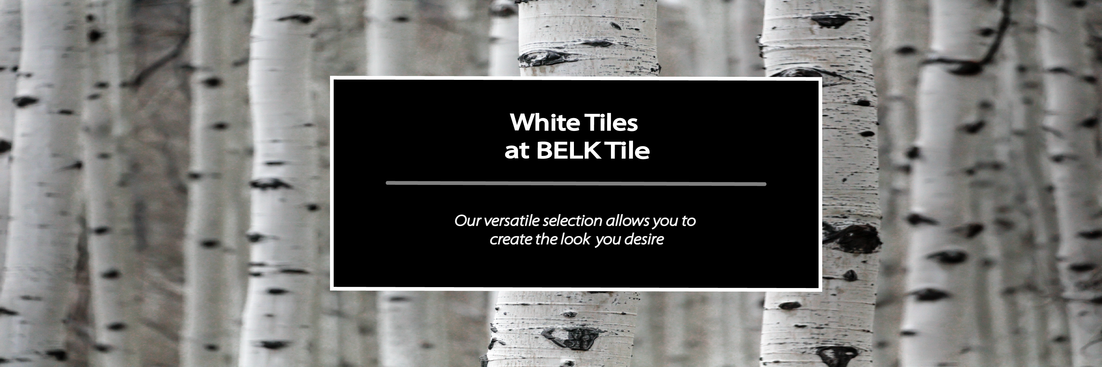 Shop by Color White tiles kitchen backsplash | Bathroom Floor Tiles | BELK Tile