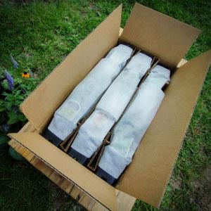 srg-packaging-pics-boxes-pots-sm-1-.jpg