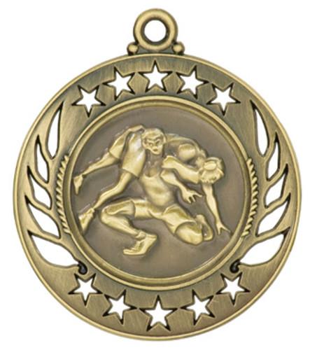 Wrestling Galaxy Medals