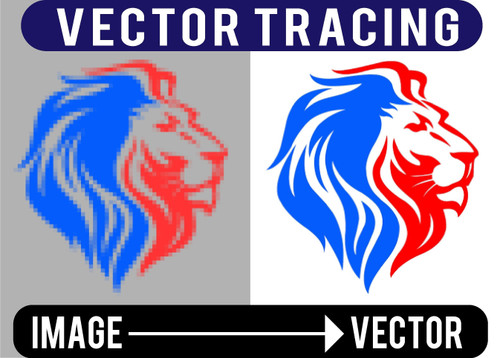 ARTWORK - VECTOR DRAWING