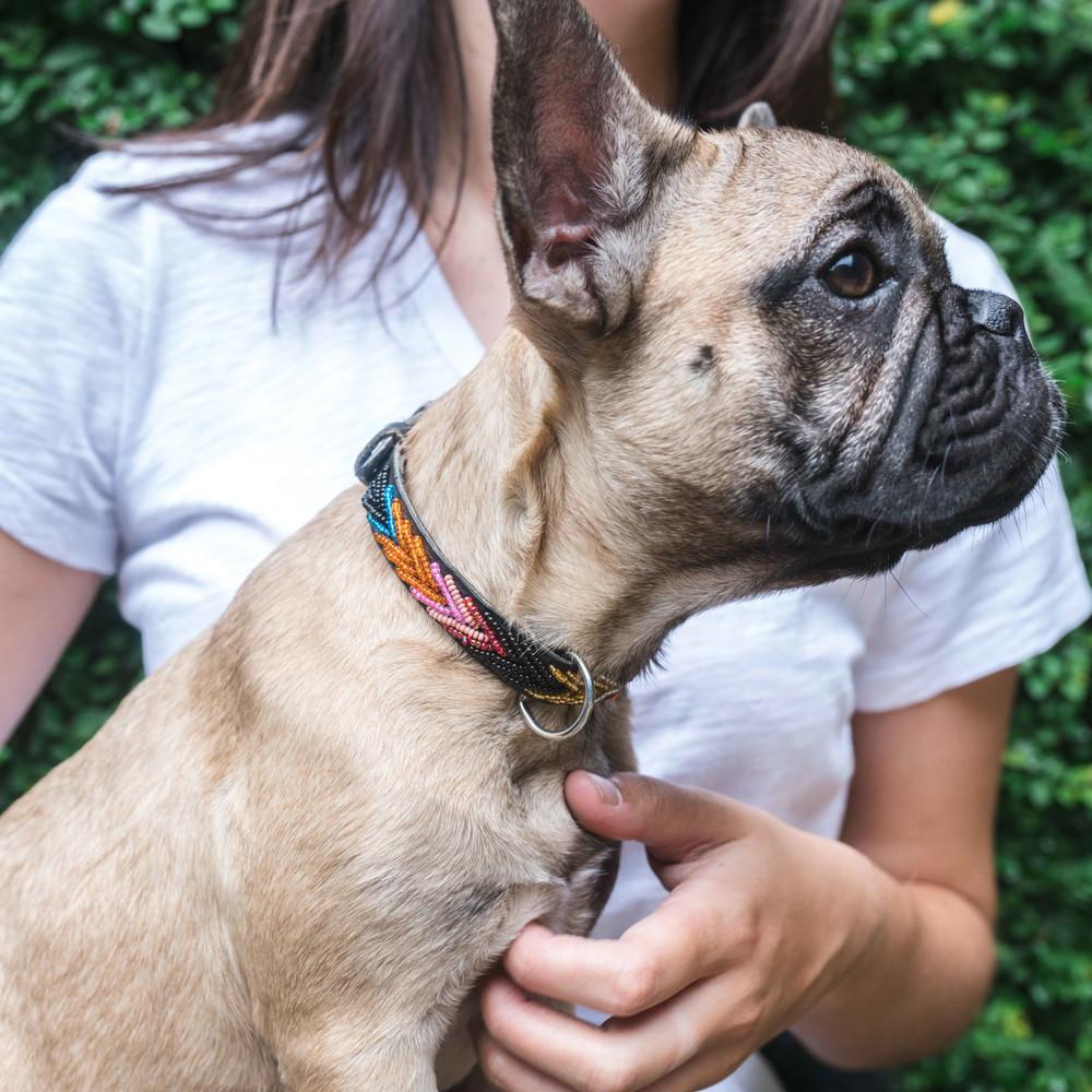 Hand-Beaded Leather Dog Collar