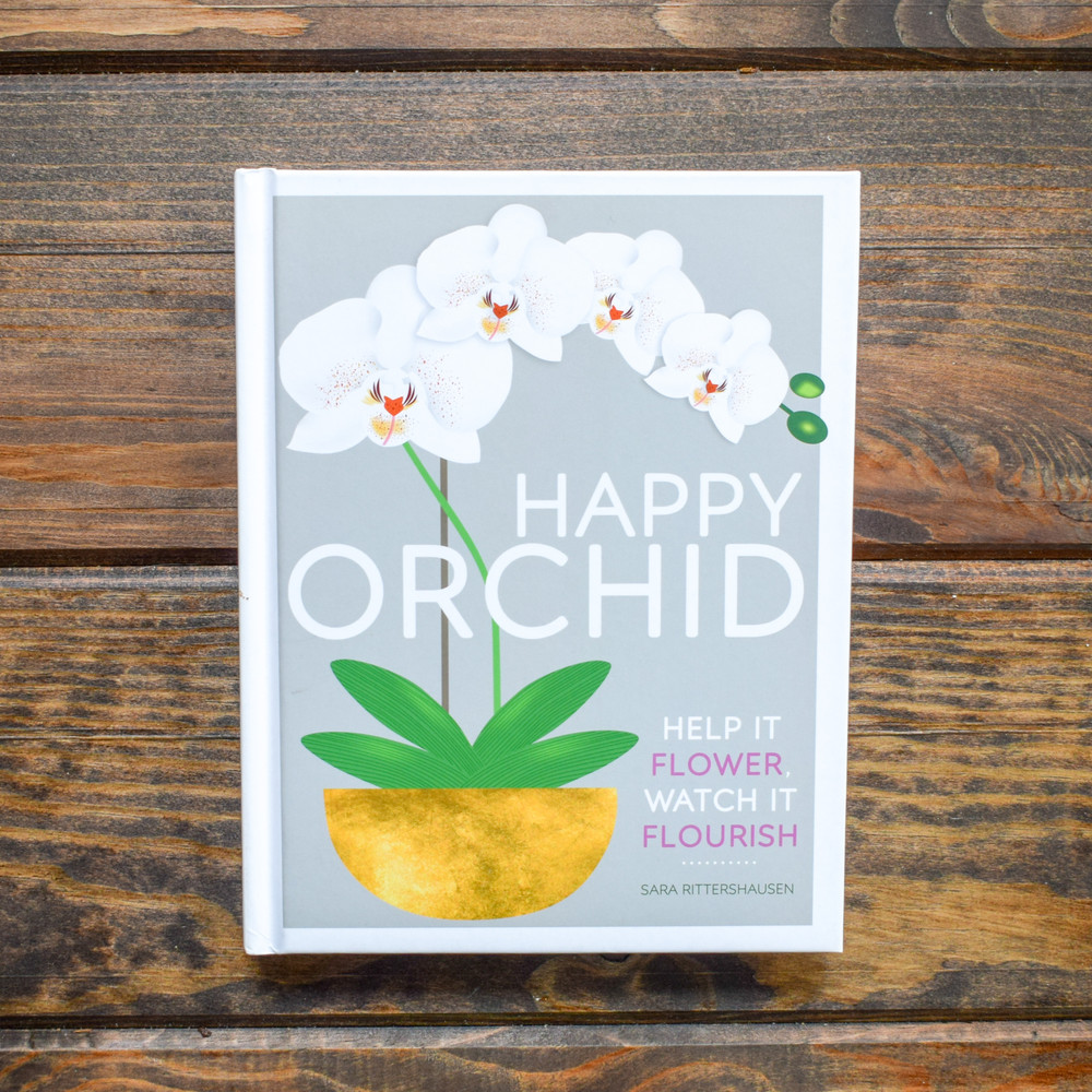 Proud new owner of a gorgeous orchid? Learn the essentials of buying orchids, orchid care and how to keep it flowering beautifully, year after year, with this bite-sized beginner's guide.