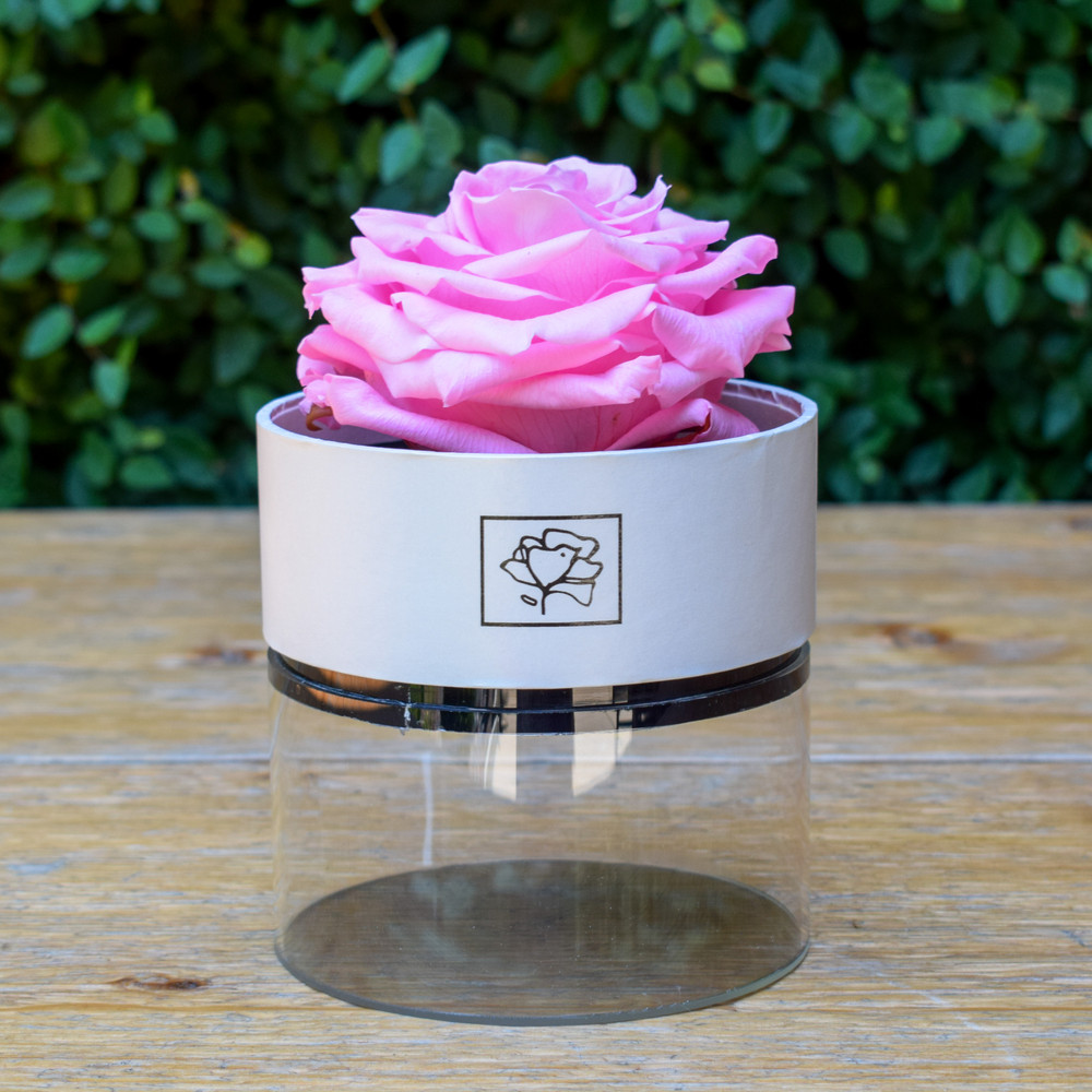 "Pink   A perfect pick me up that will continue bringing joy for up to a year. These  roses are preserved in a round white box, with acrylic top and offer lasting perfume and color. Treated with environmental friendly & non toxic products, size appx. 4.72""."