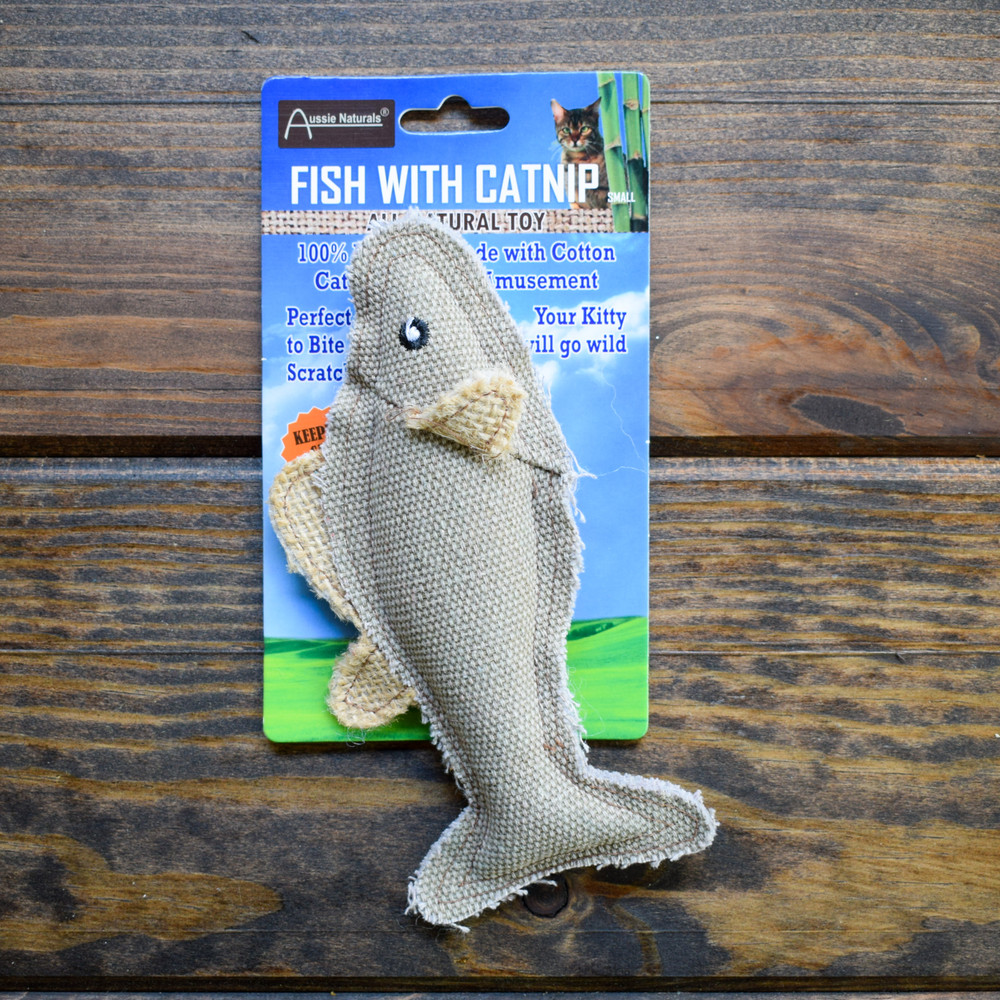 Catnip Fish for Cat