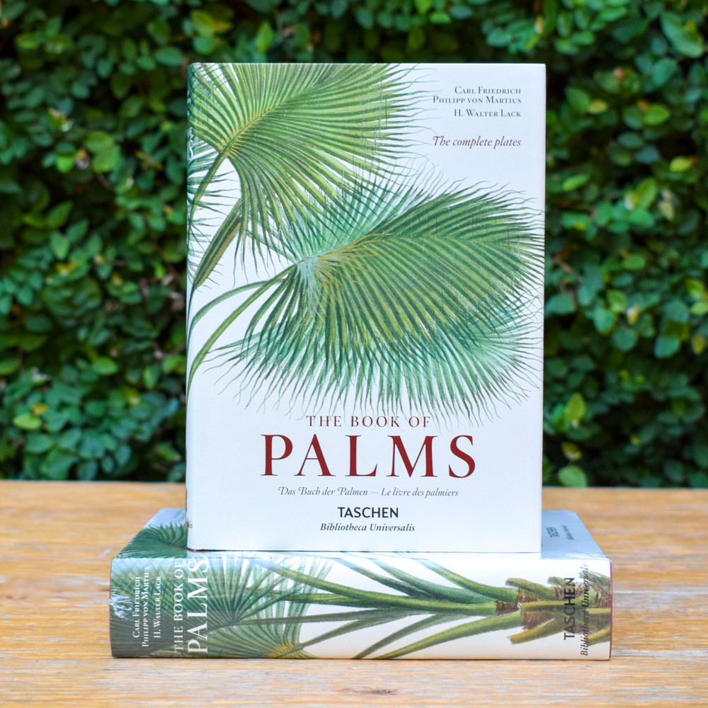 The Book of Palms by Phillip von Martius - Taschen