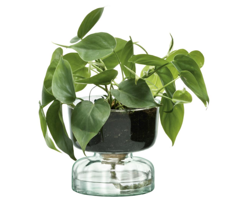Canopy Self Watering Planter