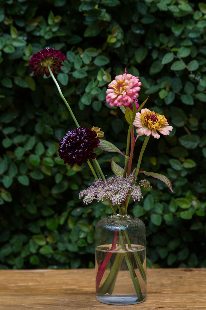 """Our Highball Vase will display your floral arrangements beautifully and elegantly. Dimensions: 2.25x4"""""""