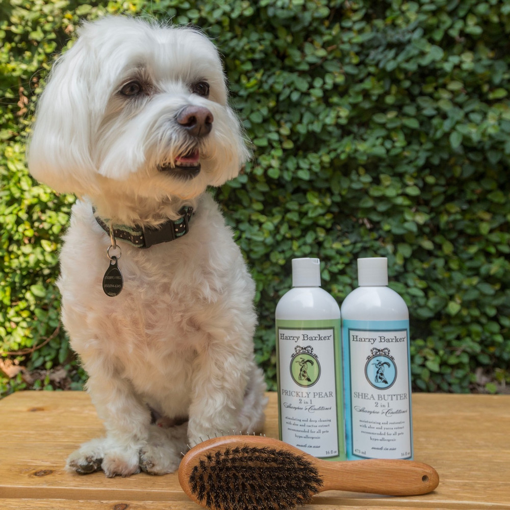 This 2-in-1 shampoo and conditioner heals hot spots and soothes dry, damaged skin with natural medicinal extracts.