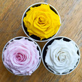 """A perfect pick me up that will continue bringing joy for up to a year. These  roses are preserved in a round white box, with acrylic top and offer lasting perfume and color. Treated with environmental friendly & non toxic products, size appx. 4.72""""."""