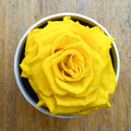 """Yellow   A perfect pick me up that will continue bringing joy for up to a year. These  roses are preserved in a round white box, with acrylic top and offer lasting perfume and color. Treated with environmental friendly & non toxic products, size appx. 4.72""""."""