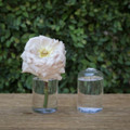 Our Highball Vase will display your floral arrangements beautifully and elegantly. Dimensions: 2.25x4""