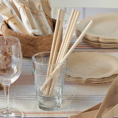 Disposable Bamboo Straws - Box of 24