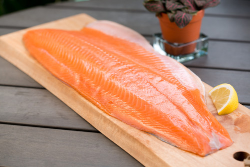 Frozen Salmon Fillet