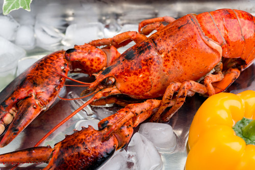 Frozen Cooked Boston Lobster (per pc)