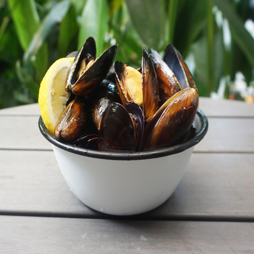 Chilean Mussels Whole 1kg