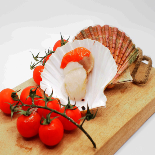Catch Seafood 1/2 Shell Scallops 500g