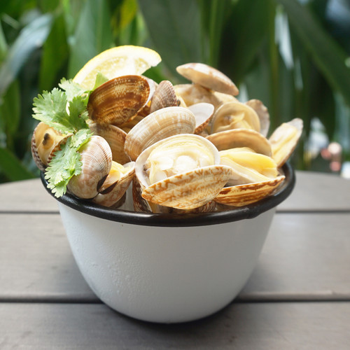 Catch Seafood White Clams 500g