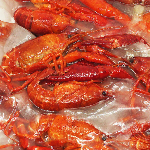 Catch Seafood Cooked Crawfish 1kg