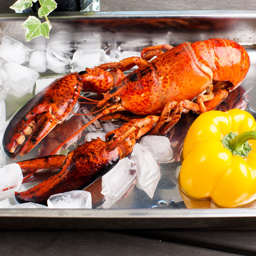 Catch Seafood Cooked Boston Lobster Whole (3pcs)