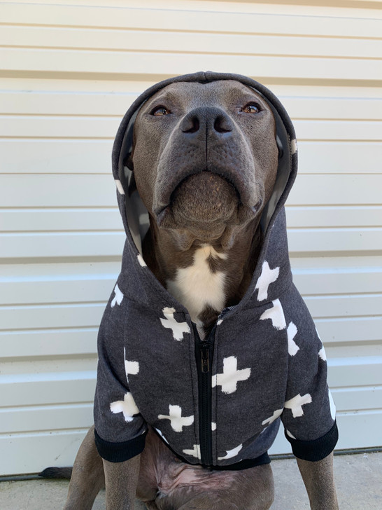 BE PAWSITIVE Dog Zip-Up Hoody