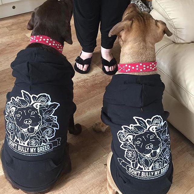 DONT BULLY MY BREED (Roses) Dog Zip-Ups