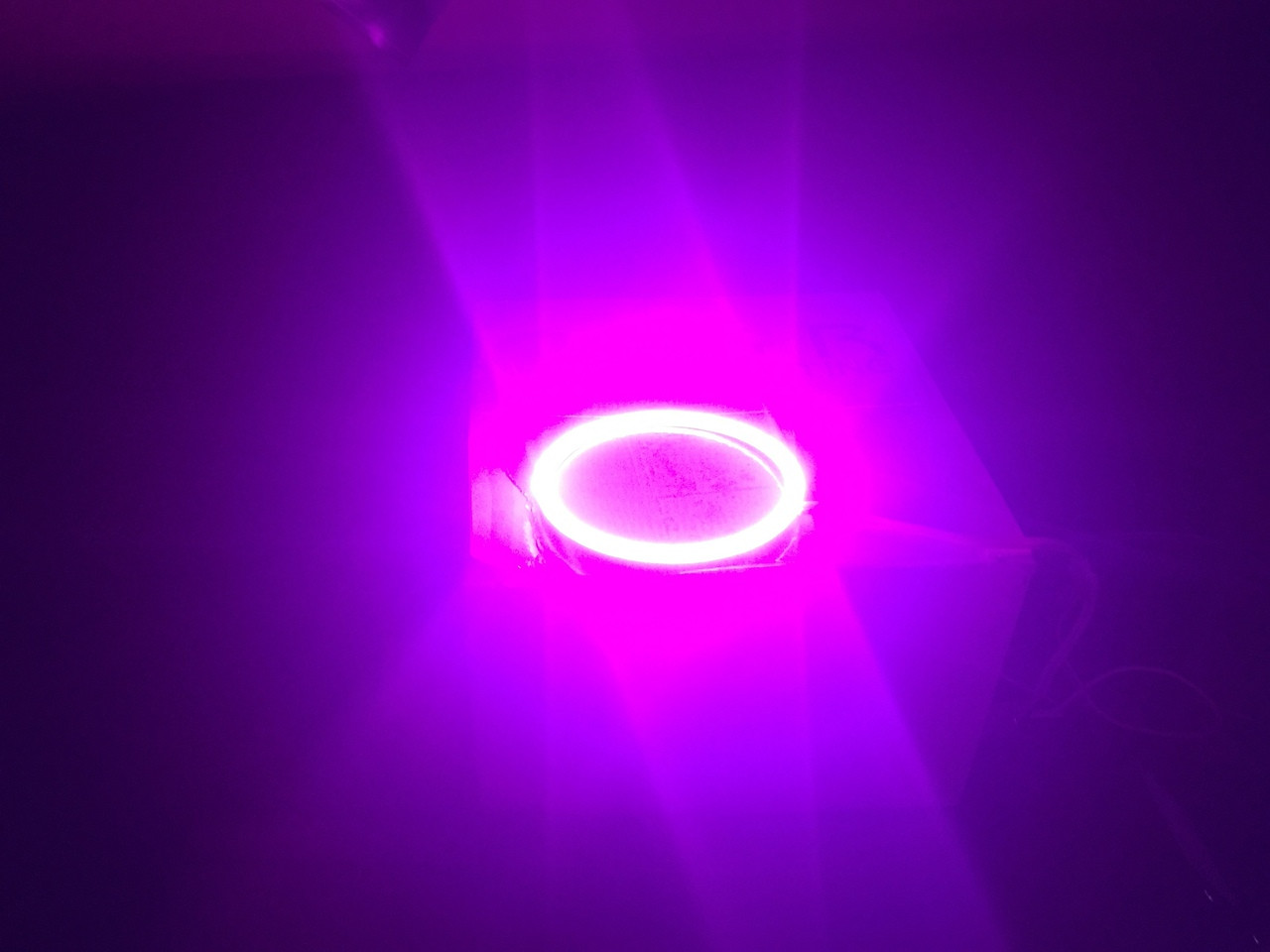 Pink Halos in the dark!