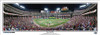 """Top of the Fifth"" 2010 World Series Panoramic Framed Poster"