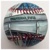 Tropicana Field Stadium Baseball