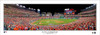 "2019 World Series ""First Pitch"" Nationals Park Panoramic Poster"