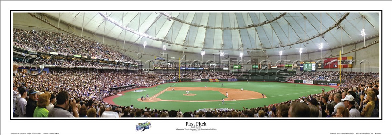 """""""First Pitch"""" Tampa Bay Devil Rays Panoramic Poster"""