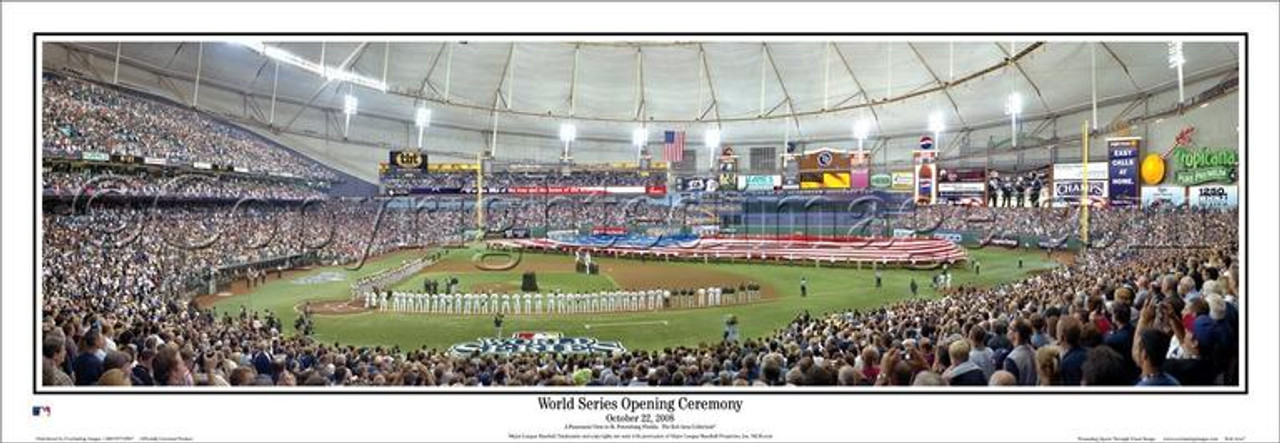 """2008 World Series"" Tampa Bay Rays Deluxe Frame Framed Poster"