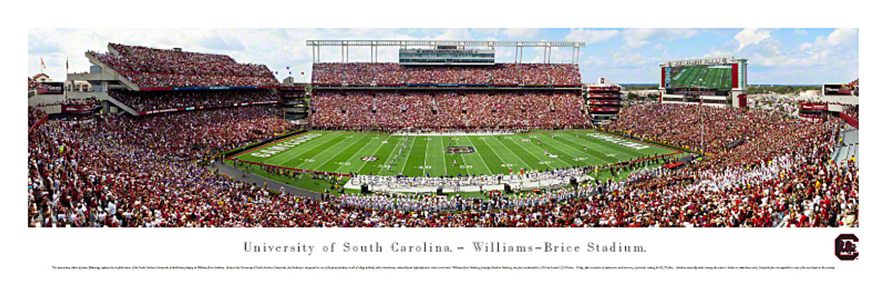 """50 Yard Line"" South Carolina Gamecocks at Williams Brice Stadium Panorama"