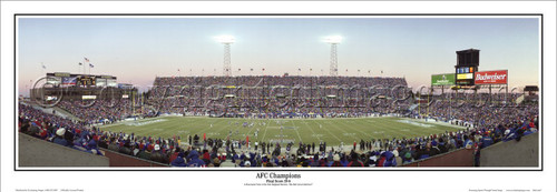 """AFC Champions"" Patriots at Foxboro Stadium Panoramic Poster"