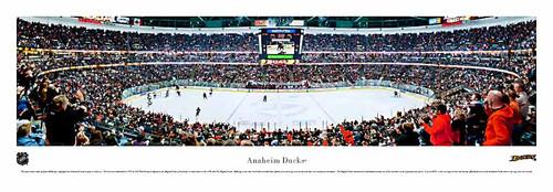 Anaheim Ducks at the Honda Center Panoarmic Poster