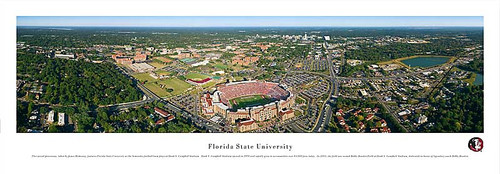 Florida State Seminoles at Doak Campbell Stadium Panorama Poster