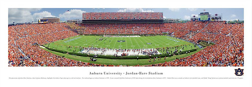Auburn Tigers At Jordan Hare Stadium Panorama Poster