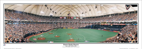 """""""Homer Hanky Heaven"""" Twins at the Metrodome Panoramic Framed Poster"""