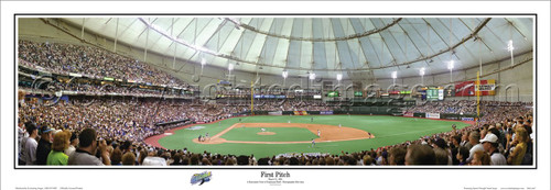 """First Pitch"" Tampa Bay Devil Rays Panoramic Poster"