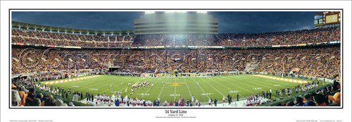 """34 Yard Line"" Tennessee Volunteers Panoramic Poster"