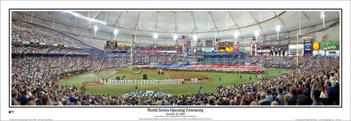 """""""2008 World Series"""" Tampa Bay Rays Deluxe Frame Framed Poster"""