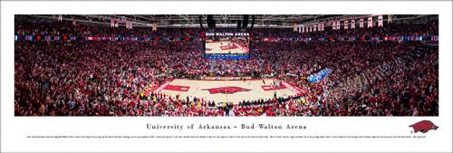 Arkansas Razorbacks Basketball at Bud Walton Arena Panoramic Poster