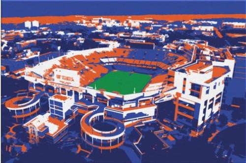 Ben Hill Griffin Stadium - Florida Gators Aerial Canvas Print