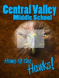 Hawks - School Spirit Mascot