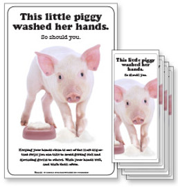 This Little Piggy Washed Her Hands Poster and/or Fact Cards