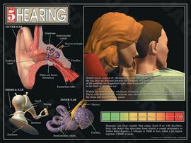 03-PS01-4 Hearing