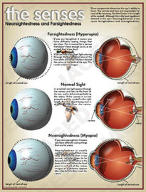 03-PS01-9 Nearsightedness and Farsightedness