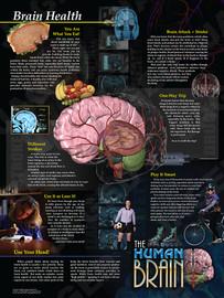 03-PS04-5  Brain Health