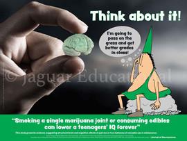 03-PS167-10 Teenage IQ