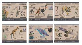 Biolocomotion Poster Series