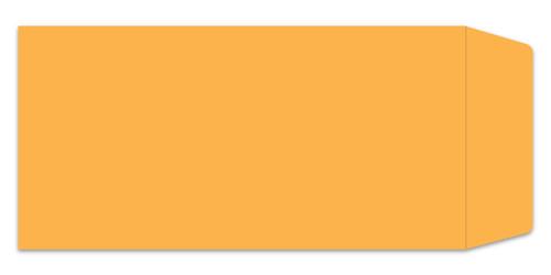 Plain License Plate Envelopes (Form #LPEV-1) (Form-#831/832)